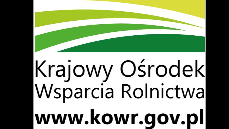 XX Edycja Programu Stypendiów Pomostowych 2021/2022