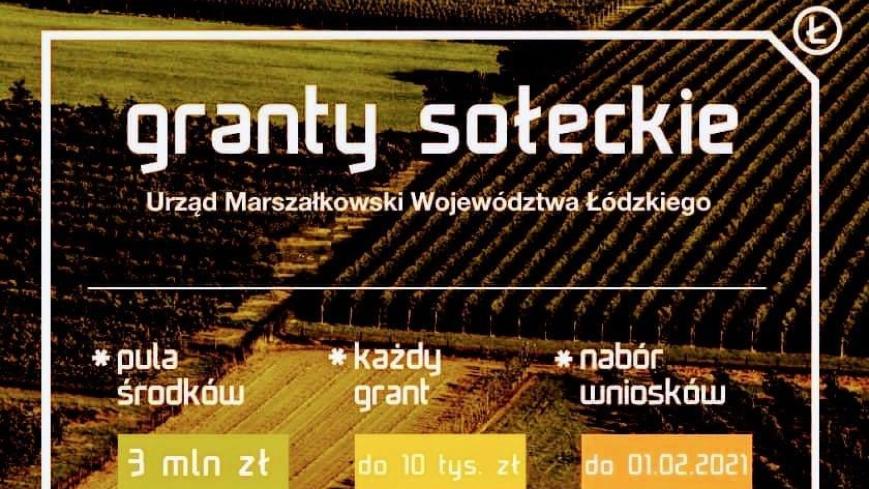 Grafika informacyjna o grantach sołeckich